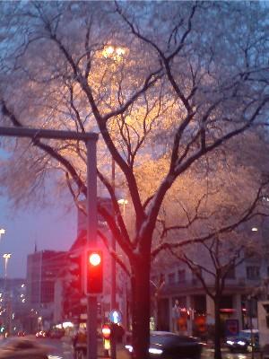 springtime01.jpg